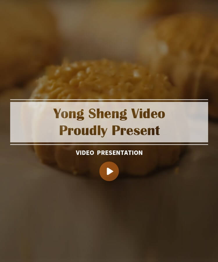 Yong Sheng Video Mobile